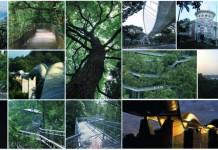 Southern Ridges, Marang Trail, FaberWalk, Canopy walk, Singapore