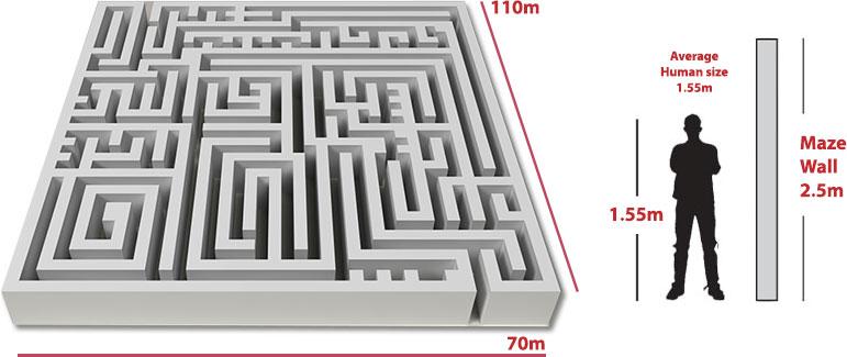 the maze challenge my