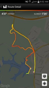 BBG 8.75km run