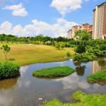 Bishan Park singapore