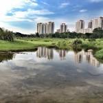 Bishan Park singapore day