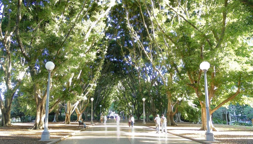 The_worlds_best_Hyde_park_Sydneyadamjwc