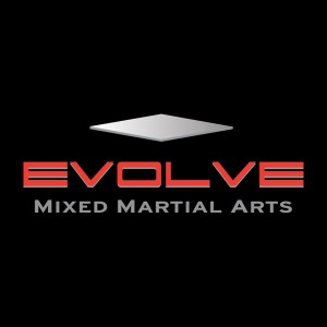 Image source: Evolve MMA