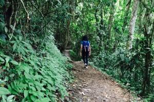 kinabalu-trekking