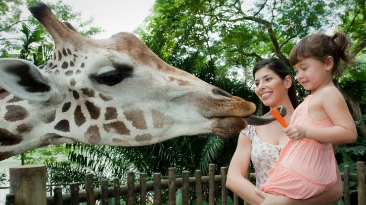 Photo credits: Singapore Tourism Board