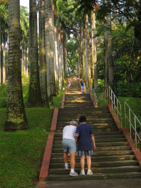 ang mo kio town garden west 1