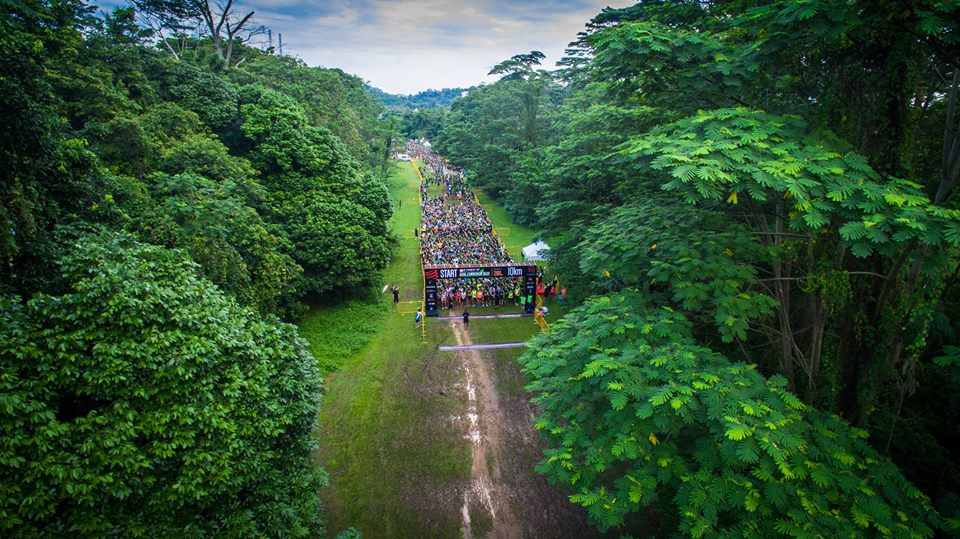 Credit : Lim Boon Tiong (Bird's Eye View)