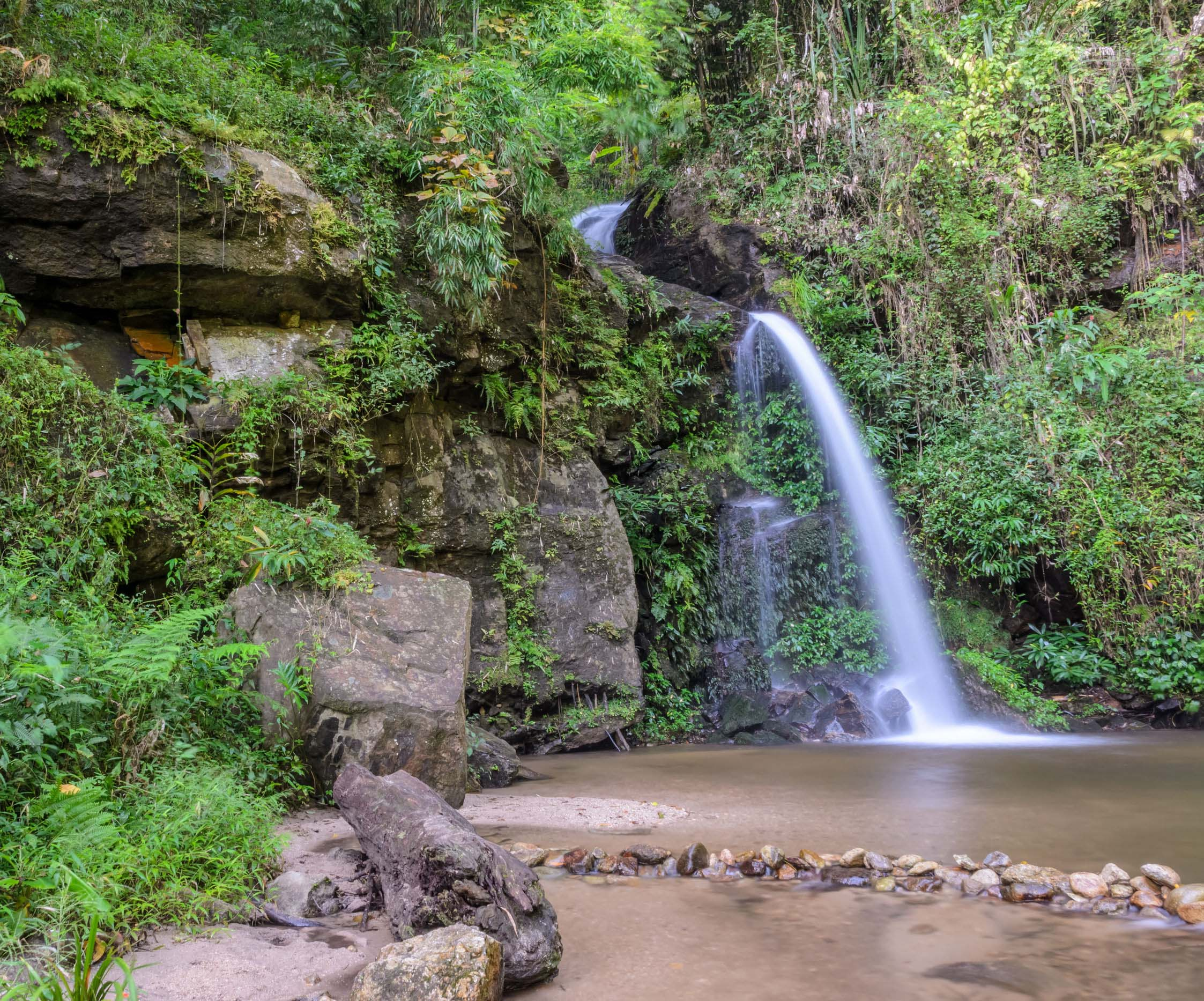 Evergreen forest waterfall on Doi Suthep mountain in Chiang Mai, Thailand