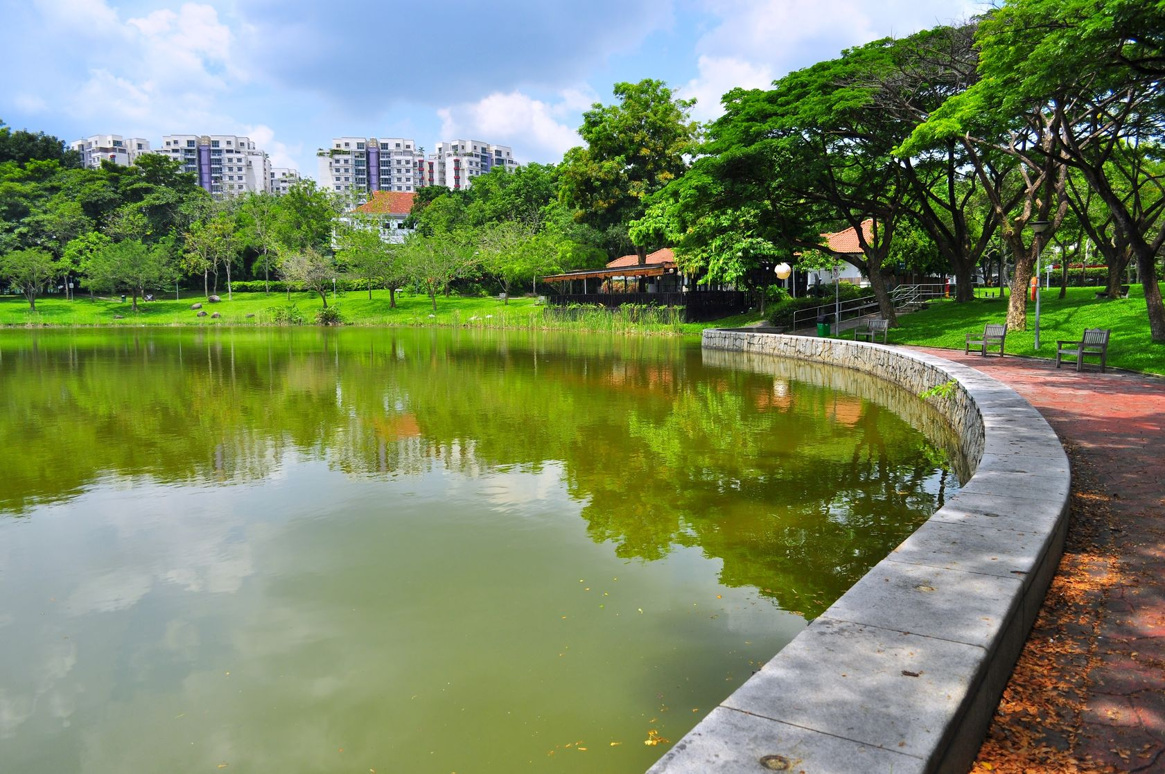 punggol park