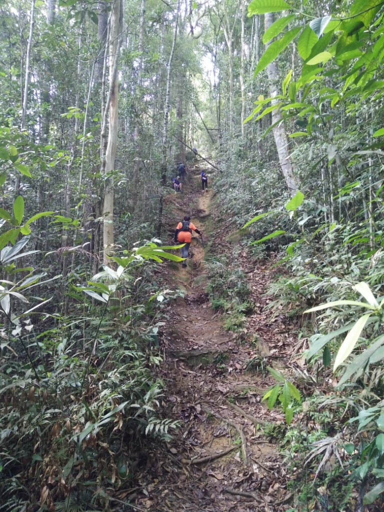 Another climb