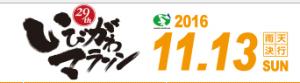 Ibigawa Marathon 2016