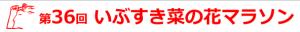 ibusuki_2017_logo