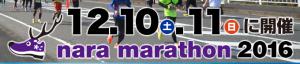 nara_2016_logo