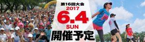 Higashine Sakuranbo Marathon 2017