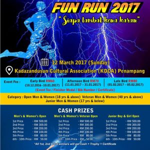 Electric Fun Run 2017