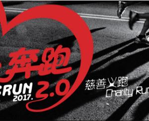Love Run 2.0 2017