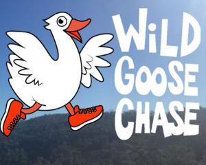 Wild Goose Chase Running Festival 2018