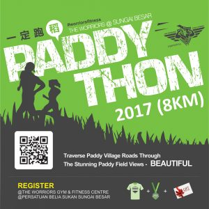 Paddython 2017