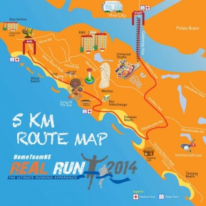 HomeTeamNS Real Run 2014