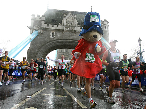paddington_bear7_470x353