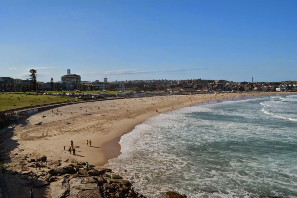 bondi beach sydney 2014 run