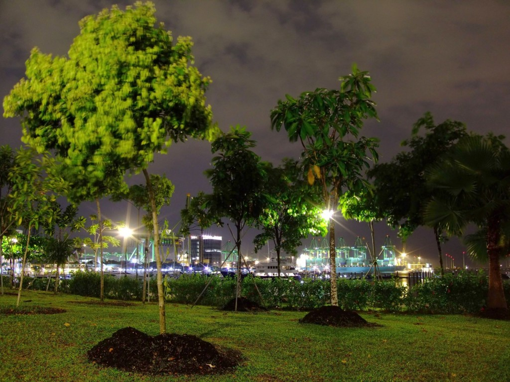 West Coast Park at night.