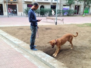 Whatcha digging?