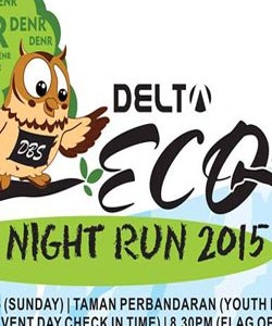 DELTA Eco Night Run 2015