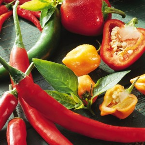 How to enjoy Spicy Food and Running at the Same Time?