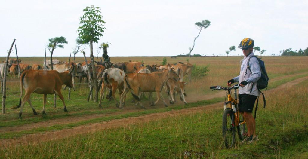 sabah-mountain-bike