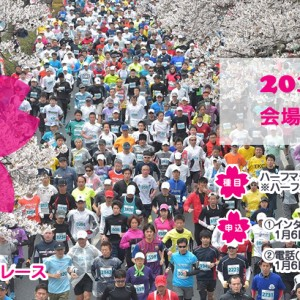 Hitachi Sakura Road Race 2016