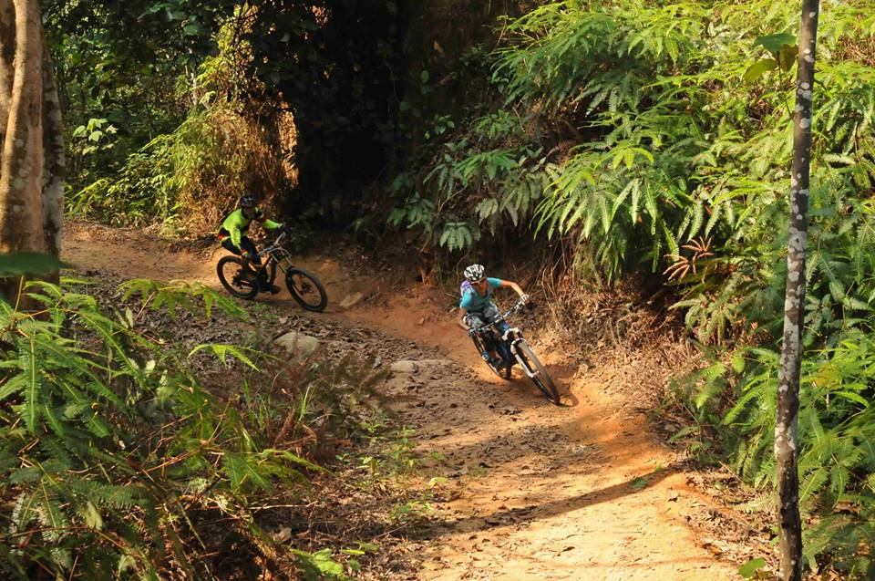 Chestnut-Nature-Park-mountain-bikers