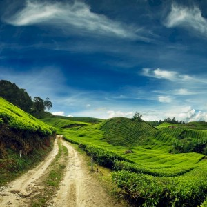 5 Running Routes in Malaysia You Should Not Miss