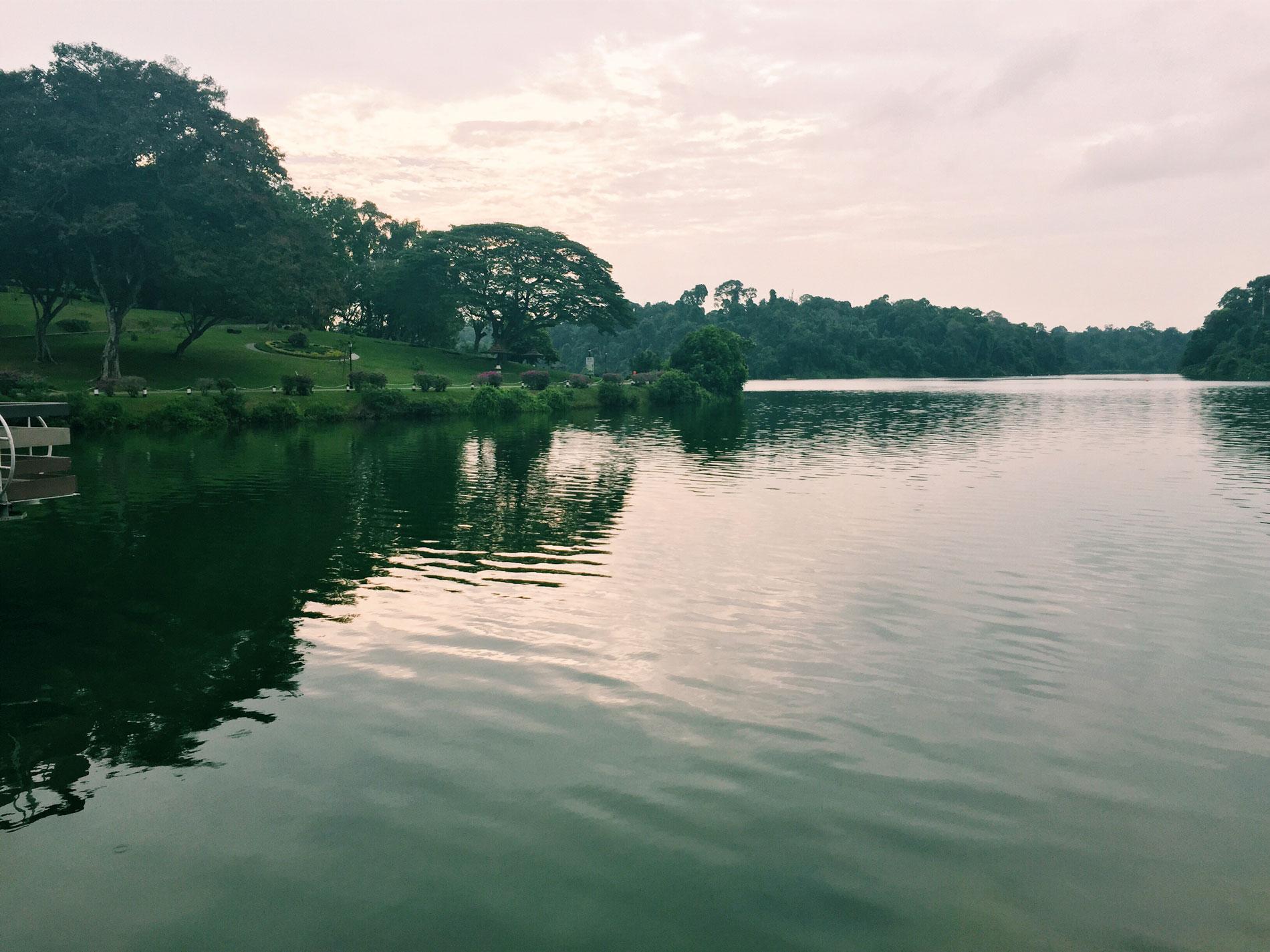 Macritchie-reservoir