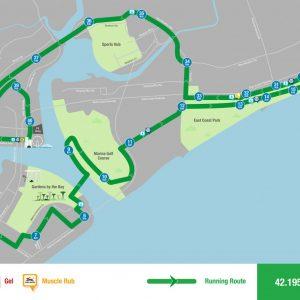 Standard Chartered Marathon Singapore 2016