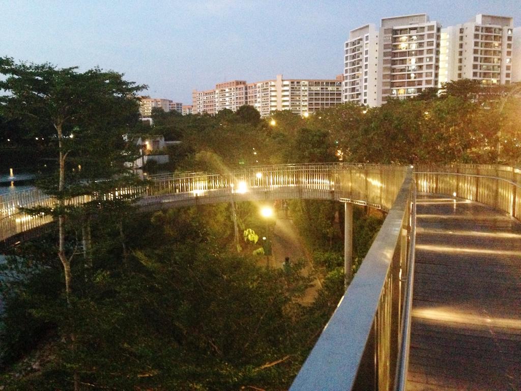 Yishun Pond2