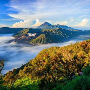 3 Runs in Indonesia You Must Not Miss!