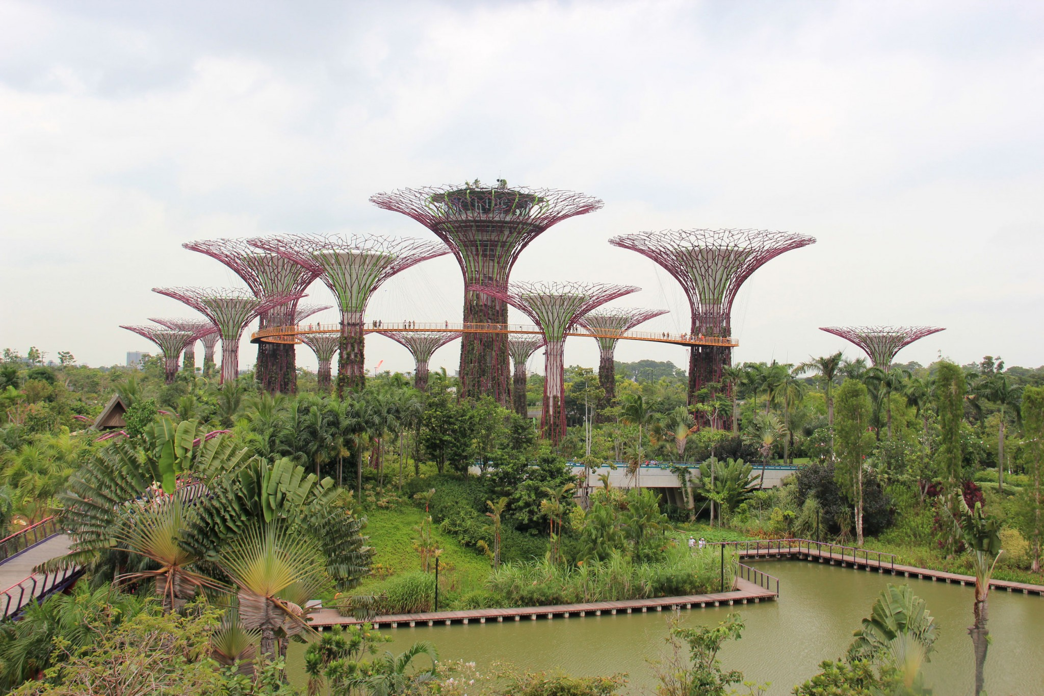 Gardens By The Bay Singapore 39 S Most Popular Running Spot Just Run Lah