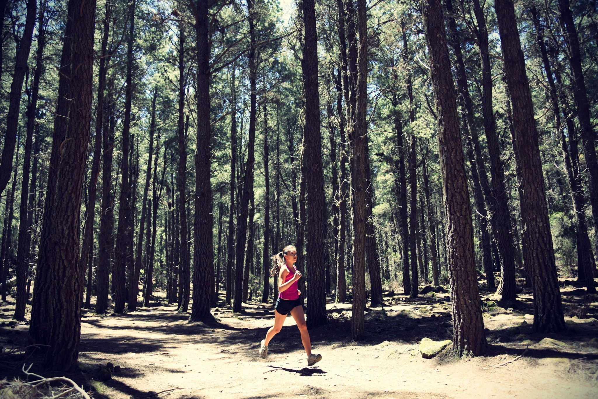 Running woman. Female runner running in forest. Beautiful Asian _ Caucasian woman athlete jogging outdoors in beautiful forest with lots of mood _ atmosphere and copy space.