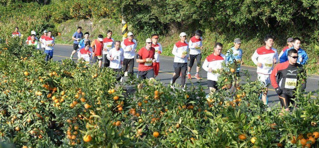 jeju-mandarin-marathon-1024x475