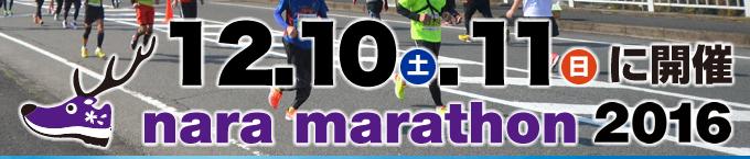 Nara Marathon 2016