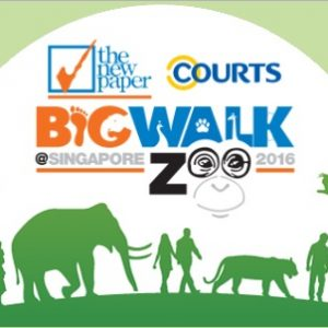TNP Big Walk 2016