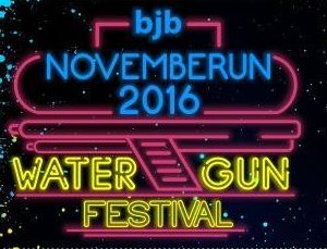 bjb NOVEMBERUN 2016