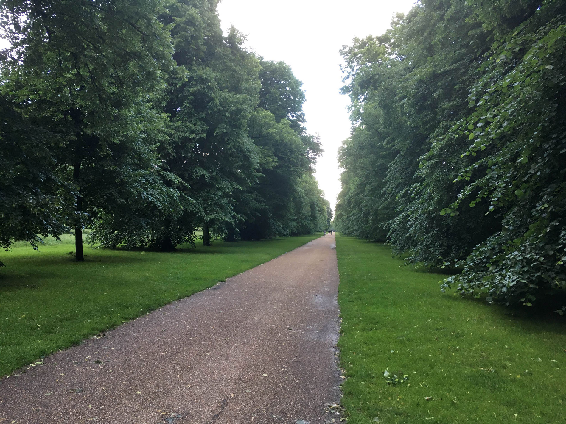 path-in-hyde-park