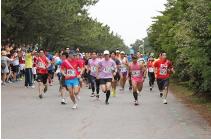 Inage Hana No Marathon 2017