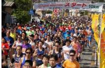 Yugawara Orange Marathon 2017