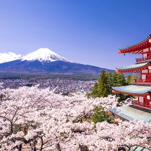 5 Local Foods To Try When You Are In Japan For Your Next Race