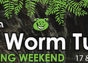 Glow Worm Tunnel Marathon 2017