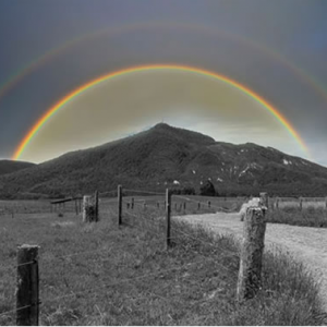 Double Rainbow Trail Run 2017