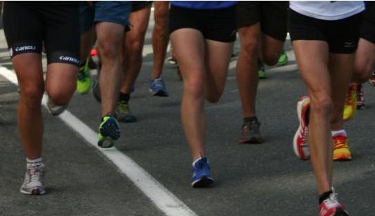 Nelson Striders Half Marathon and 10K 2018